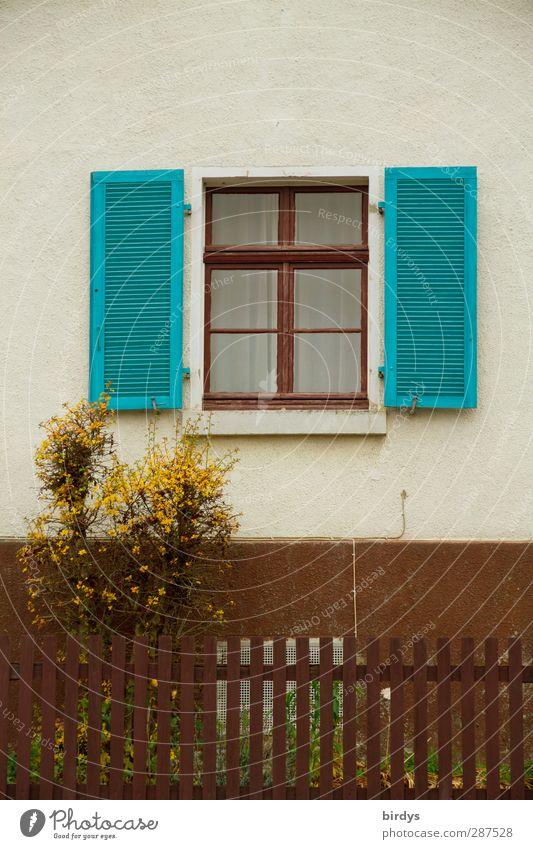 ländlich schön Stadt weiß gelb Fenster braun offen Fassade authentisch Häusliches Leben Warmherzigkeit Sträucher Freundlichkeit Dorf Vergangenheit türkis