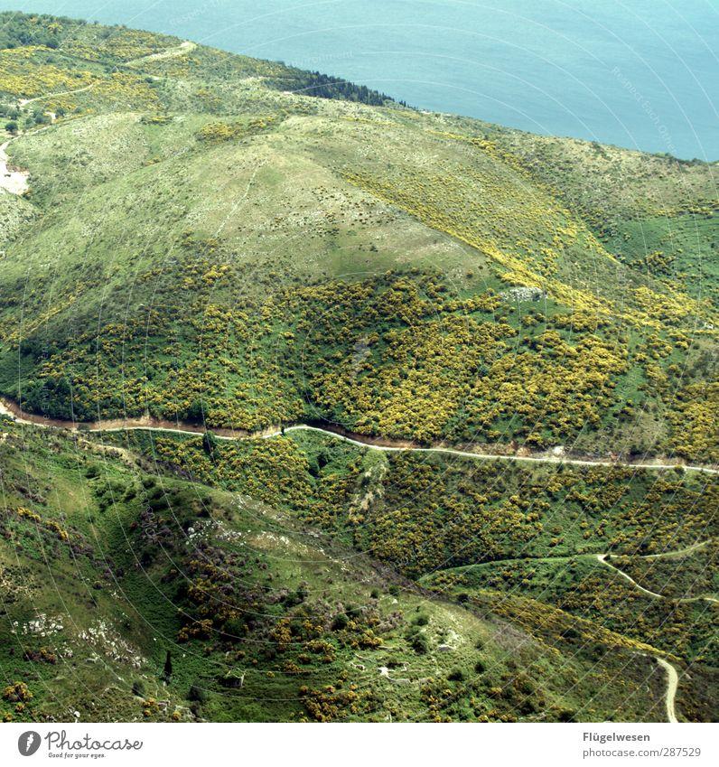 Sorgen verkleinern Ferne Freiheit Sommer Sonne Umwelt Natur Landschaft Pflanze Klima Klimawandel Wetter Schönes Wetter Sträucher Korfu Vogelperspektive