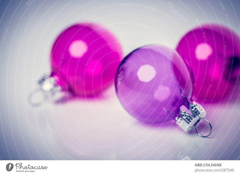 Baum gesucht (2) Weihnachten & Advent rosa Dekoration & Verzierung modern Glas rund Kitsch violett Kugel durchsichtig Weihnachtsbaum Weihnachtsdekoration