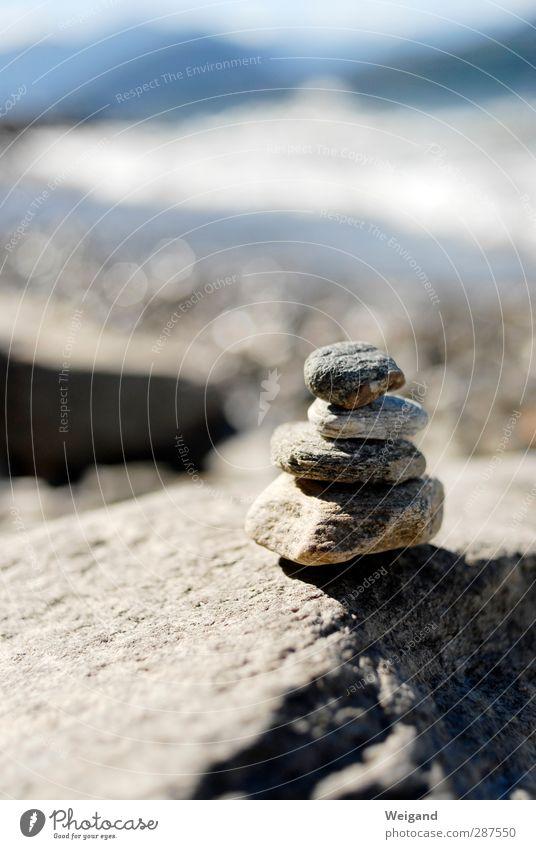 Steinbaum 2 Sommer Meer Strand ruhig Erholung Leben Küste Horizont Wellen Zufriedenheit Insel Ausflug Hoffnung hören Sommerurlaub Wohlgefühl