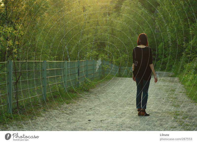 green ambience harmonisch Wohlgefühl Junge Frau Jugendliche Erwachsene 1 Mensch 18-30 Jahre Umwelt Natur Sommer Baum Sträucher Park Wald Wege & Pfade Jeanshose