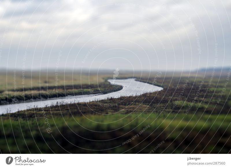 Marschland Ferien & Urlaub & Reisen Ferne Freiheit Meer Natur Landschaft Pflanze Wasser Himmel Wolken Horizont Herbst schlechtes Wetter Nebel Küste Nordsee