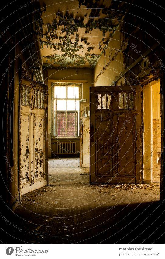 . alt Farbe Einsamkeit ruhig Fenster Wand Mauer Gebäude außergewöhnlich Tür leer ästhetisch kaputt trist Ewigkeit Fabrik