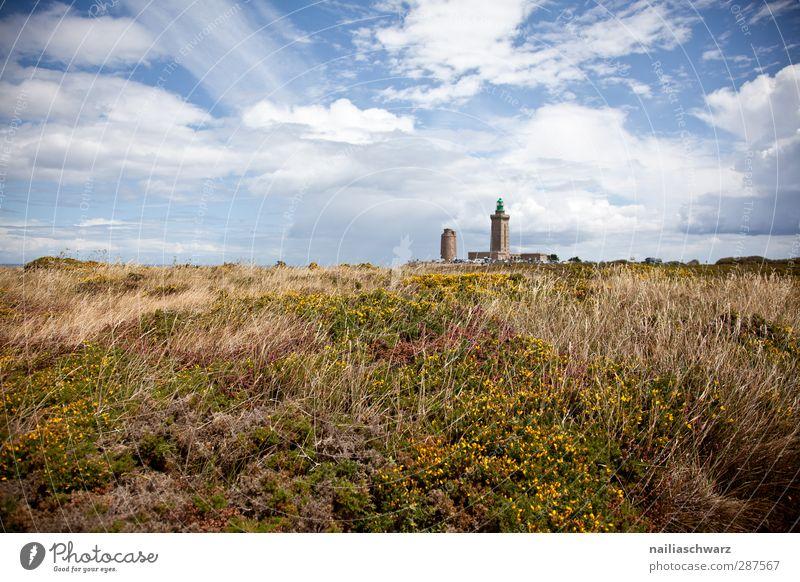 Cap Fréhel Himmel Natur blau grün schön Sommer Pflanze Blume ruhig Landschaft gelb Ferne Umwelt Gras Architektur Stimmung