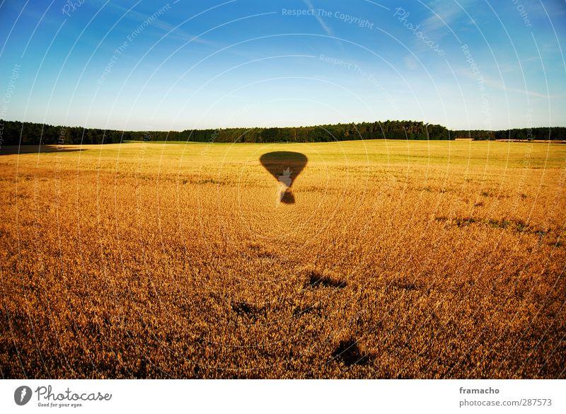 Balloon Himmel Natur blau Ferien & Urlaub & Reisen Sommer Pflanze Tier ruhig Landschaft Wald gelb Umwelt Freiheit Luft außergewöhnlich fliegen