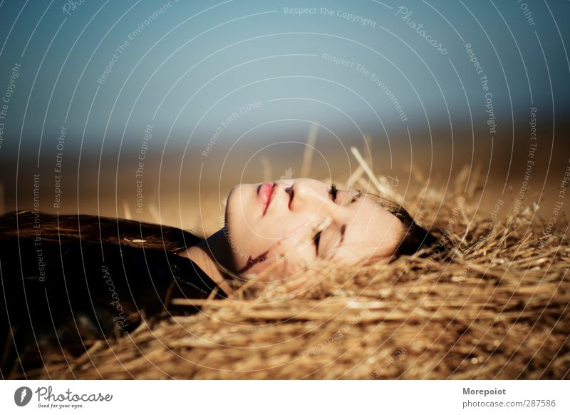 Licht feminin Frau Erwachsene Kopf 1 Mensch 18-30 Jahre Jugendliche Natur Pflanze Nutzpflanze genießen schlafen schön blau gelb gold Gefühle Farbfoto