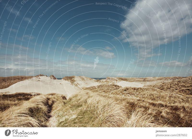 Bjerregårds klit Ferien & Urlaub & Reisen Ausflug Freiheit Sommer Sommerurlaub Sonne Strand Meer Umwelt Natur Landschaft Himmel Wolken Schönes Wetter Küste