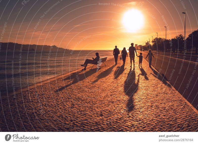 The Gang Mensch Sommer Sonne Lifestyle Erwachsene Wärme gelb Paar Menschengruppe orange Zusammensein Freundschaft Ausflug wandern gold ästhetisch