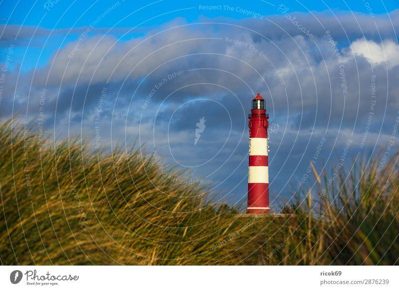 Leuchtturm in Wittdün auf der Insel Amrum Erholung Ferien & Urlaub & Reisen Tourismus Natur Landschaft Wolken Herbst Küste Nordsee Architektur Sehenswürdigkeit