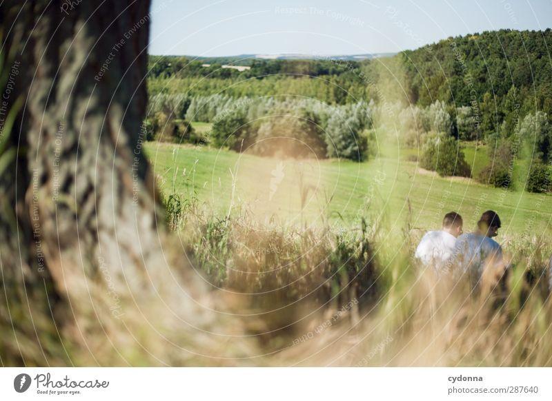 Zu Zweit Mensch Natur Jugendliche Sommer Baum ruhig Landschaft Erholung Erwachsene Wald Umwelt Junge Frau Wiese Leben Junger Mann Gras
