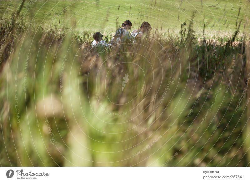 Zu Dritt Mensch Natur Jugendliche Sommer ruhig Erholung Erwachsene Umwelt Junge Frau Wiese Leben Junger Mann Gras Freiheit 18-30 Jahre träumen