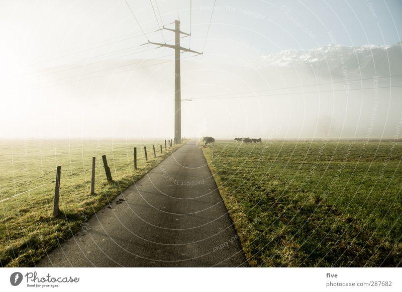 Weiterleitung Himmel Natur Sonne Wolken Landschaft Umwelt Wiese Berge u. Gebirge kalt Herbst Feld Erde Gipfel Strommast