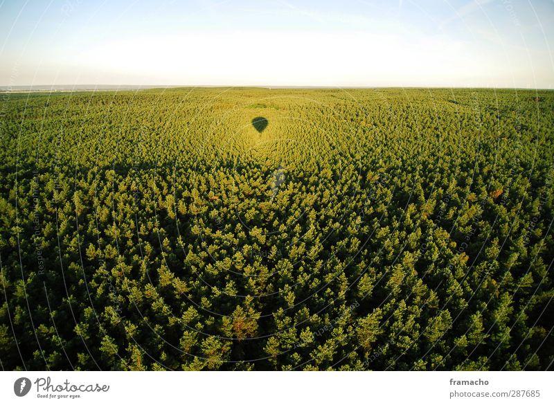 Balloon 3 Freude harmonisch Freizeit & Hobby fliegen Ballonfahrt Tourismus Ausflug Abenteuer Ferne Freiheit Sommer Sonne Luftverkehr Umwelt Natur Landschaft