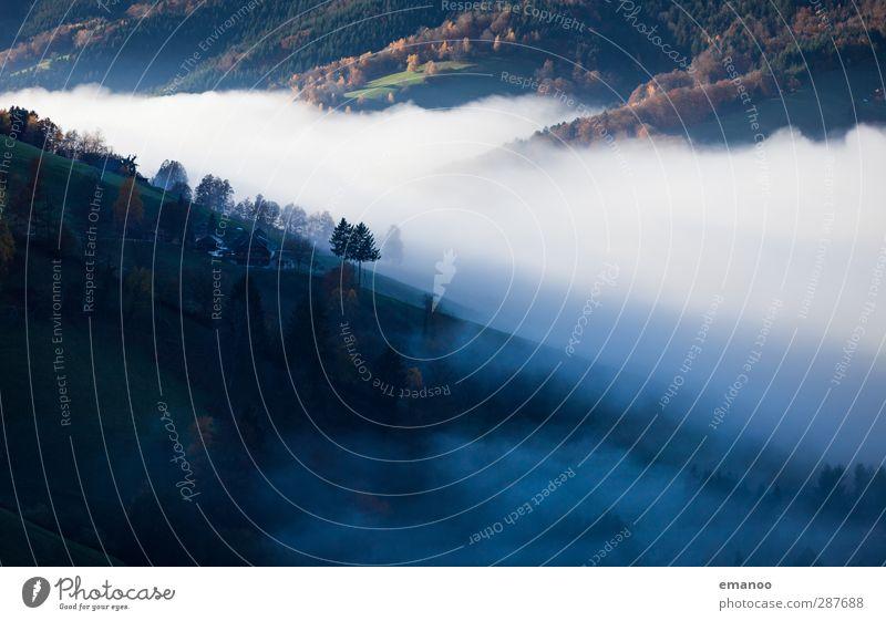 wo die Wolken fließen Umwelt Natur Landschaft Luft Wasser Himmel Herbst Klima Wetter Nebel Pflanze Baum Wald Hügel Berge u. Gebirge Schlucht Bewegung dunkel