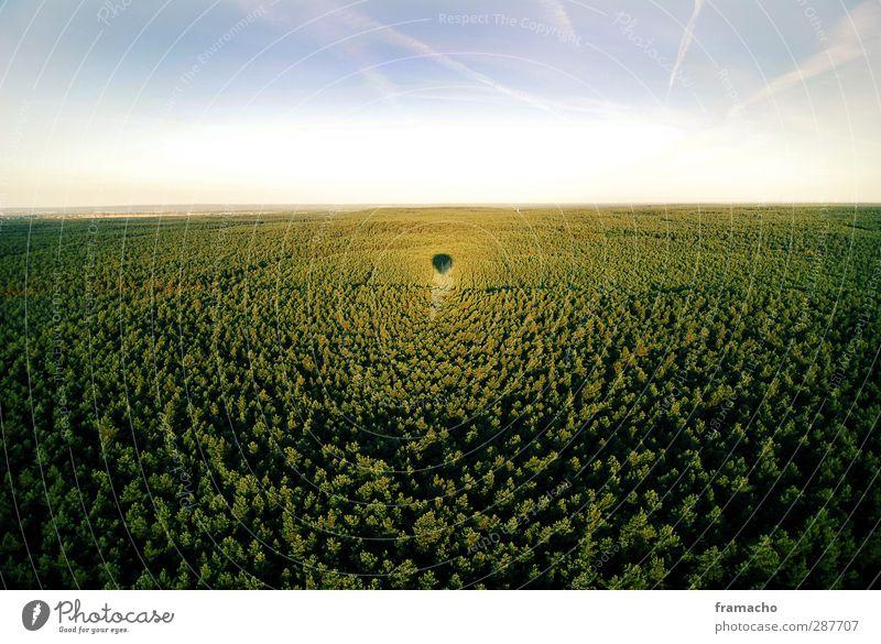 Balloon 4 Himmel Natur grün Sommer Sonne Freude Landschaft Wald Ferne Umwelt Gefühle oben Freiheit Glück Luft Horizont