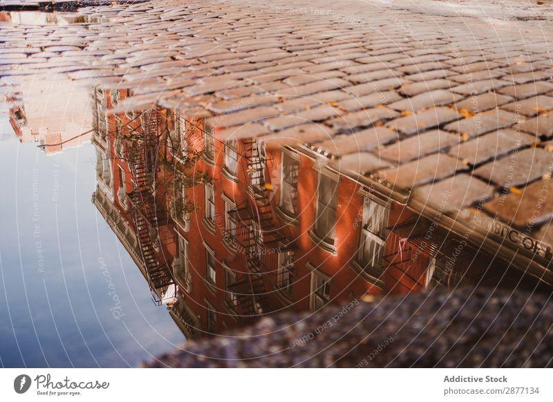 Gebäudereflexion in der Pfütze auf dem Bürgersteig Straße Reflexion & Spiegelung New York State Großstadt Straßenbelag Kopfsteinpflaster Wasser amerika USA