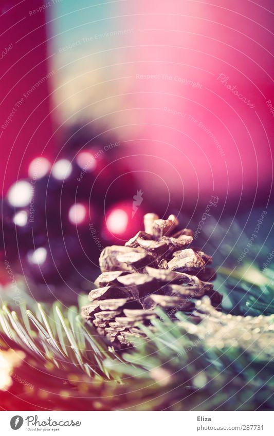 Zapfenstreich Tannenzweig Nostalgie Weihnachten & Advent gemütlich Wärme Beeren rot Adventskranz altehrwürdig Retro-Farben Dekoration & Verzierung