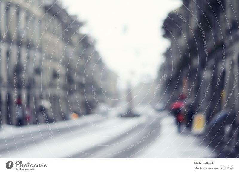 pure as snow. Stadt ruhig Winter Erholung Umwelt Schnee Bewegung Schneefall Zufriedenheit Ausflug beobachten genießen Wohlgefühl Hauptstadt stagnierend
