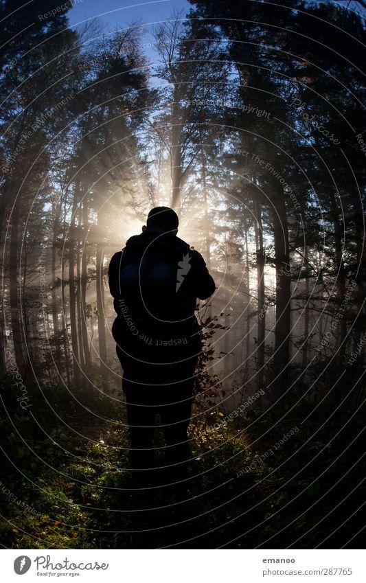 marqs Mensch Himmel Natur Mann Ferien & Urlaub & Reisen Baum Sonne Wolken Landschaft Erwachsene Wald dunkel Herbst Stil hell Luft