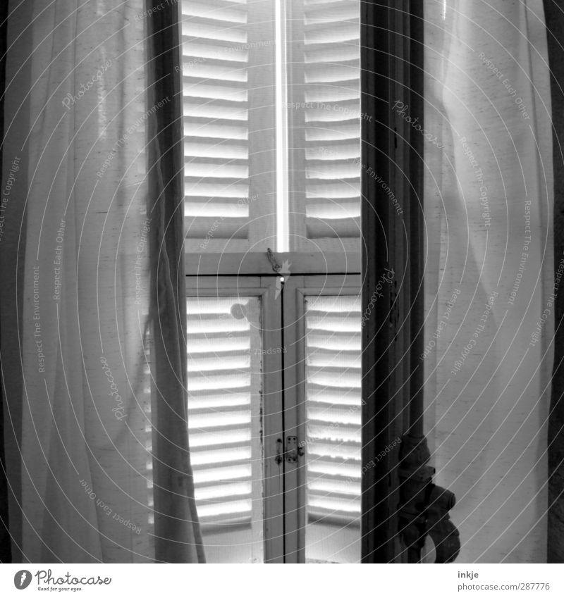 Früh morgens Häusliches Leben Schlafzimmer Fenster alt hell schön Idylle ruhig Gardine Vorhang Holzfenster Lamellenjalousie Fensterladen seicht Morgen