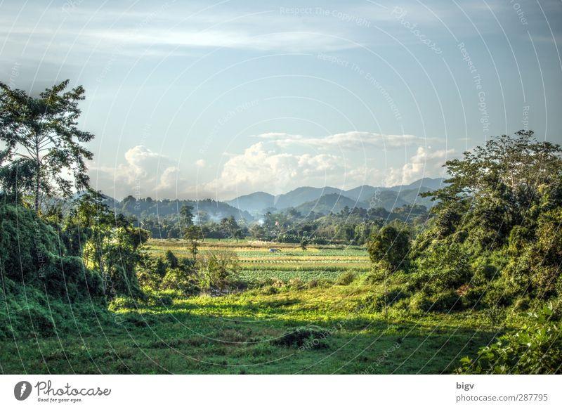 Landscape Umwelt Natur Landschaft Pflanze Himmel Wolken Sommer Schönes Wetter Wärme Baum Gras Urwald Hügel Thailand HDR Chiang Rai Farbfoto Außenaufnahme