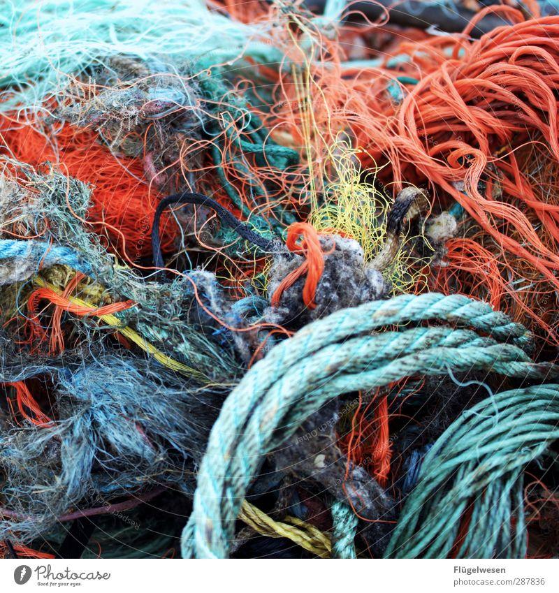 Netze flicken Lebensmittel Fisch Meeresfrüchte Ernährung Essen fangen Jagd krabbeln Erfolg Kraft Appetit & Hunger bedrohlich Angeln Fischereiwirtschaft
