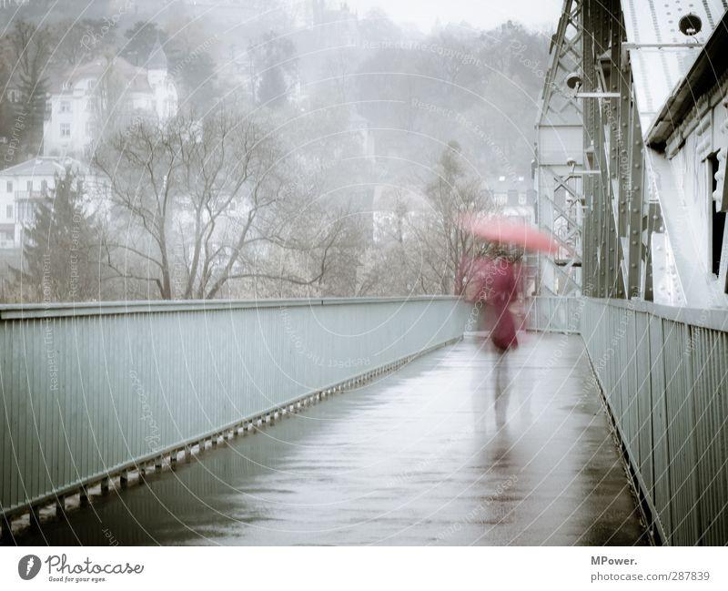 rainy days Mensch Frau Jugendliche rot Erwachsene Herbst feminin Wege & Pfade grau 18-30 Jahre Beine Regen Wind Rücken Nebel laufen