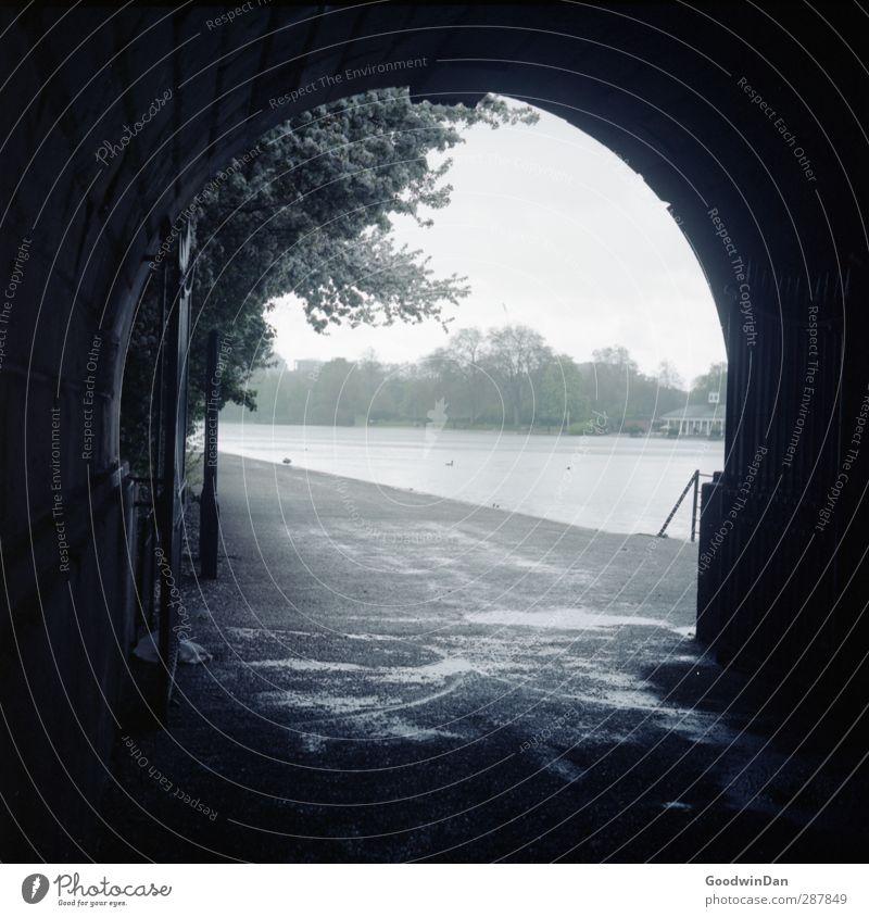Balge trocknen. Umwelt Natur Winter schlechtes Wetter Unwetter Regen Baum Park See Hauptstadt Stadtzentrum Tunnel Tor bedrohlich hell nass trist blau Farbfoto