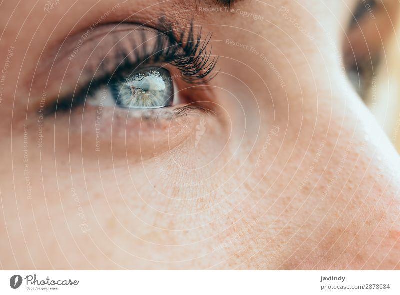 Make-up schöne blaue Augen der jungen Frau Haut Gesicht Schminke Mensch feminin Junge Frau Jugendliche Erwachsene 1 18-30 Jahre weiß Farbe schließen nach oben