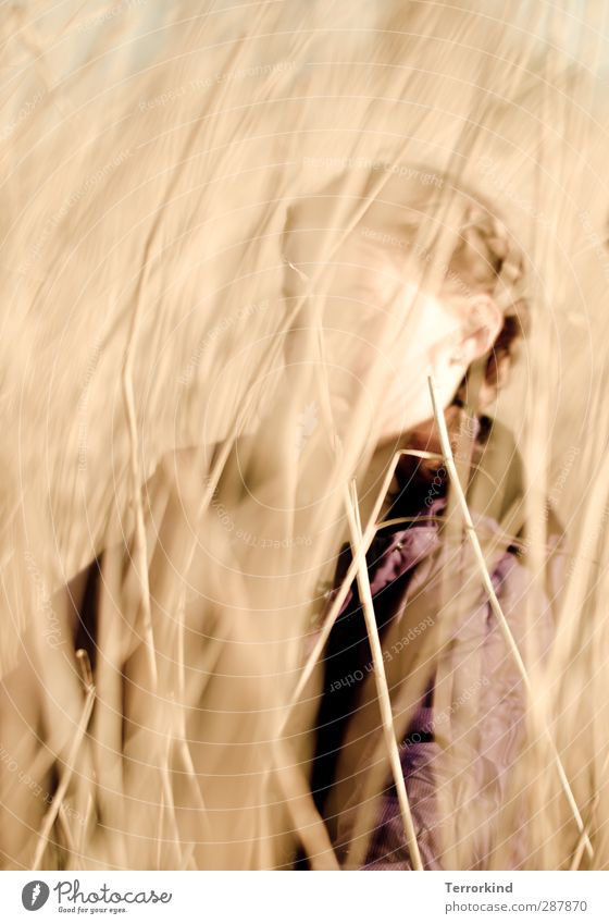 Hiddensee | zopf.zeit Feld Gras Kind Mensch Mädchen Zopf geflochten Haare & Frisuren Unschärfe verstecken gehen schreiten Sommer Sonne Jacke Wind Kindheit