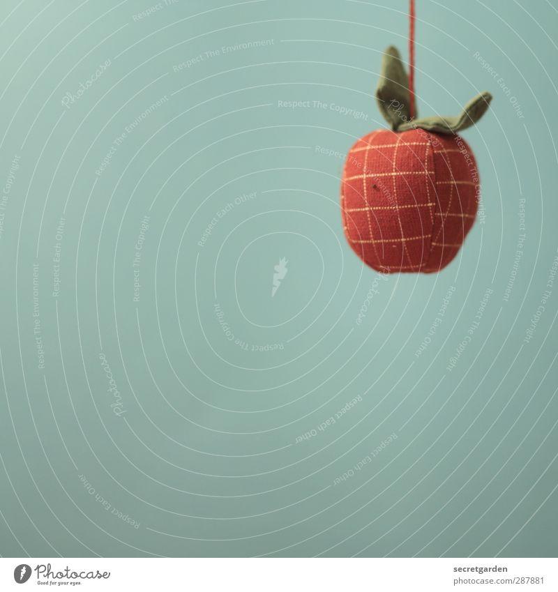 an apple a day. Weihnachten & Advent rot Gesunde Ernährung Wohnung Freizeit & Hobby Dekoration & Verzierung Stoff Kitsch Apfel türkis Handwerk hängen kariert