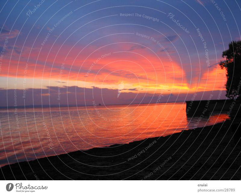 Sonnenuntergang See Wolken Abend rot violett Wasser Himmel orange