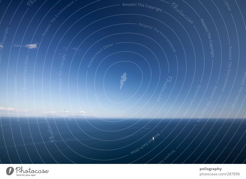 Auf einsamen Kurs Himmel Natur Ferien & Urlaub & Reisen Wasser Sommer Pflanze Meer Wolken Landschaft Ferne Freiheit Horizont Wetter Wellen Freizeit & Hobby
