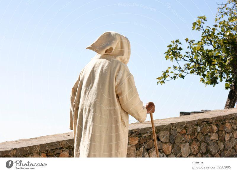 Marsch des Methusalem harmonisch Wohlgefühl Zufriedenheit Sommer wandern maskulin Mann Erwachsene Männlicher Senior Rücken 1 Mensch 45-60 Jahre 60 und älter