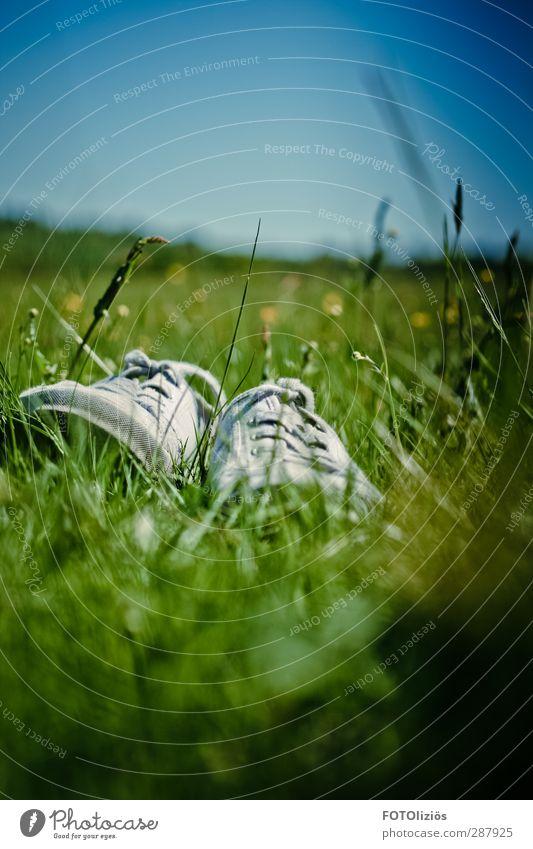 Summer where are you Himmel Natur Pflanze Freude Landschaft Wiese Freiheit Stimmung Schuhe Freizeit & Hobby Wolkenloser Himmel