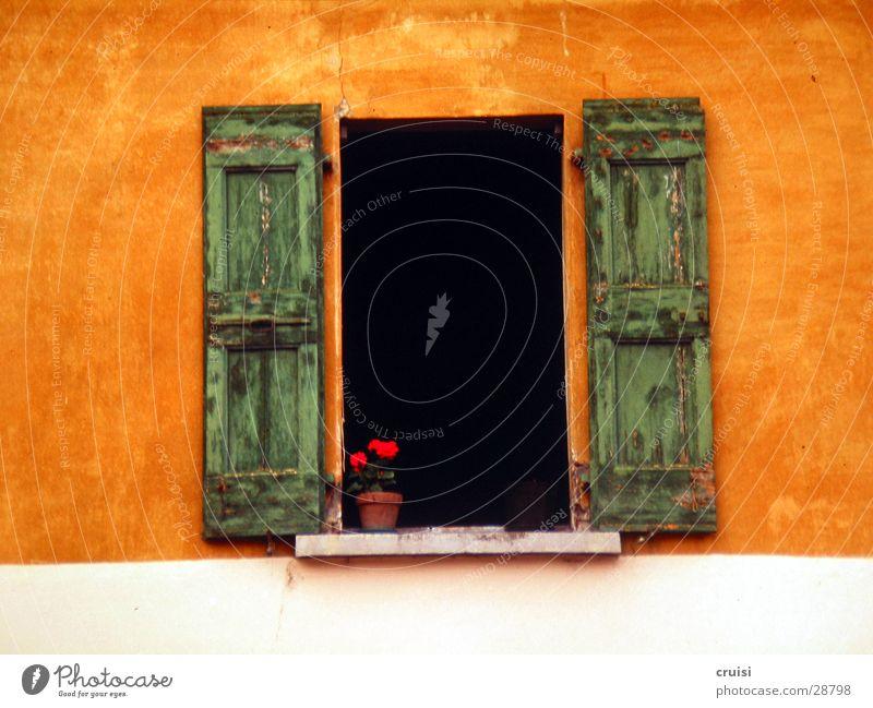 Grün auf Orange und auch schwarz mit dabei Italien Gardasee Wand Fensterladen Fensterbrett grün mehrfarbig Fröhlichkeit offen ruhig Europa orange Ehrlichkeit