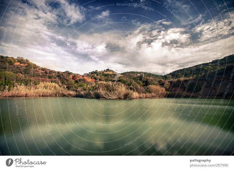 nirgendwo Umwelt Natur Landschaft Pflanze Erde Luft Wasser Himmel Wolken Horizont Sommer Klima Schönes Wetter Wärme Dürre Gras Sträucher Wildpflanze Hügel