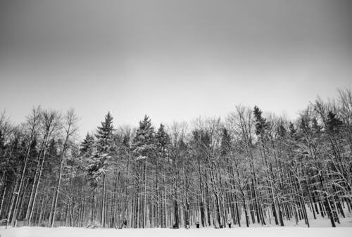maybe. Himmel Winter Wald Schnee Schneefall Kraft Gipfel Skifahren Hügel Schneebedeckte Gipfel Schneelandschaft Berghang Skigebiet Skipiste Snowboarding