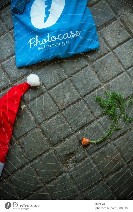 Wichtelpopichtel für photocase lustig Kunst außergewöhnlich Fotografie einzigartig Kreativität Kultur Werbung positiv Möhre Collage rebellieren Nikolausmütze