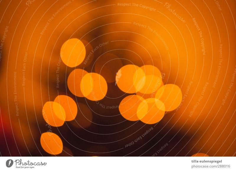 weihnachten olé Weihnachten & Advent Dekoration & Verzierung Kerze leuchten Wärme orange Weihnachtsbaum Licht Unschärfe gemütlich Farbfoto Kunstlicht