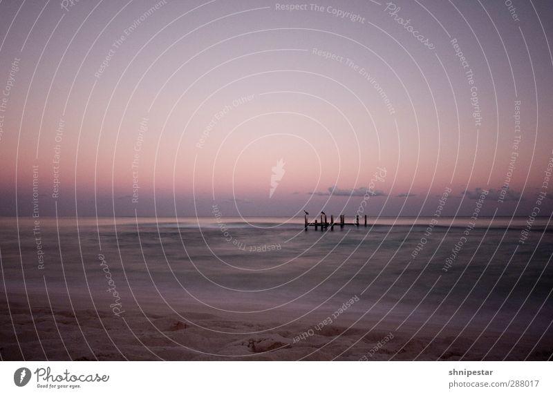 Sunset @ Caribean Sea, Yucatán, Mexico Ferien & Urlaub & Reisen Tourismus Ferne Freiheit Sommer Sommerurlaub Sonne Strand Meer Nachtleben Schwimmen & Baden