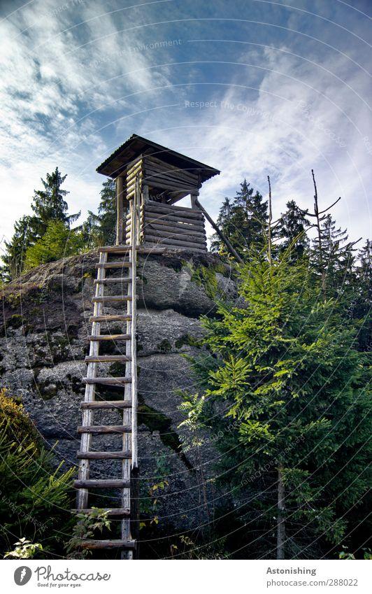 Hochstand Umwelt Natur Landschaft Pflanze Luft Himmel Wolken Sommer Klima Wetter Schönes Wetter Baum Sträucher Moos Wald Hügel Felsen Hütte Stein Holz hoch blau