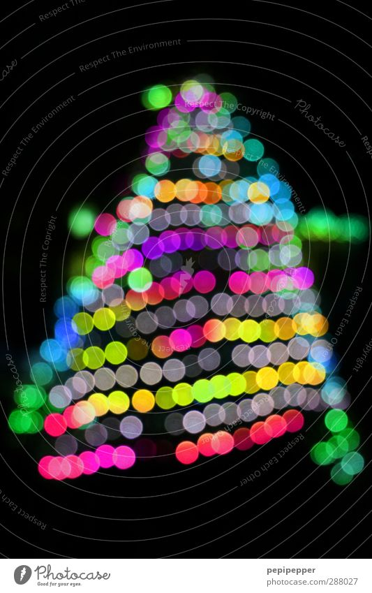 kitsch-mas Weihnachten & Advent Baum Winter Gefühle Stimmung Kunst außergewöhnlich glänzend leuchten Coolness Kerze Zeichen Kitsch Weihnachtsbaum Kugel trendy