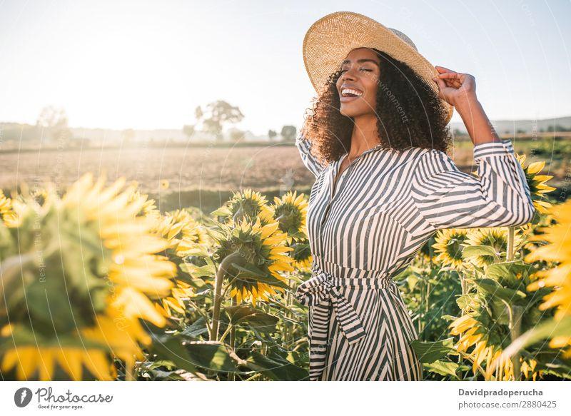 Glückliche junge schwarze Frau auf einem Sonnenblumenfeld Feld urwüchsig lockig Afrikanisch gemischtrassig niedlich Jugendliche Lächeln Hintergrundbild Hut