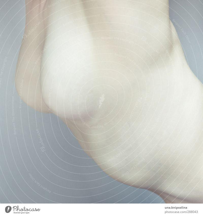 bogen Gesundheit Krankheit Frau Erwachsene Frauenbrust 1 Mensch 18-30 Jahre Jugendliche ästhetisch außergewöhnlich Erotik gruselig hell kalt rund schön trashig