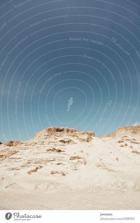 Hinterm Horizont Ferien & Urlaub & Reisen Umwelt Natur Landschaft Sand Himmel Sommer Schönes Wetter Hügel Küste Strand Nordsee hell schön Wärme blau Dänemark