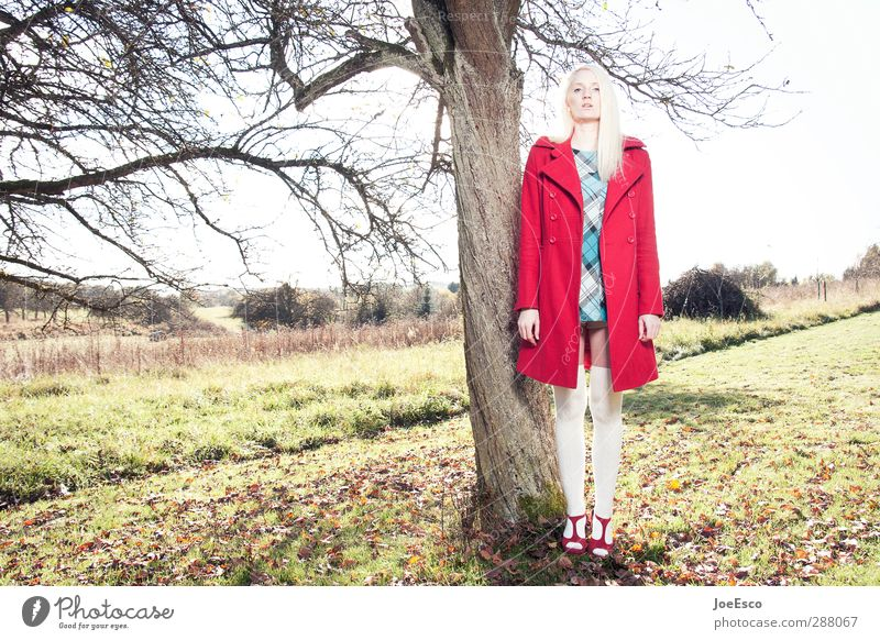 #246259 Stil Abenteuer Freiheit Frau Erwachsene Leben 1 Mensch Natur Landschaft Sonnenlicht Baum Mode Kleid Mantel Strümpfe Damenschuhe blond beobachten träumen