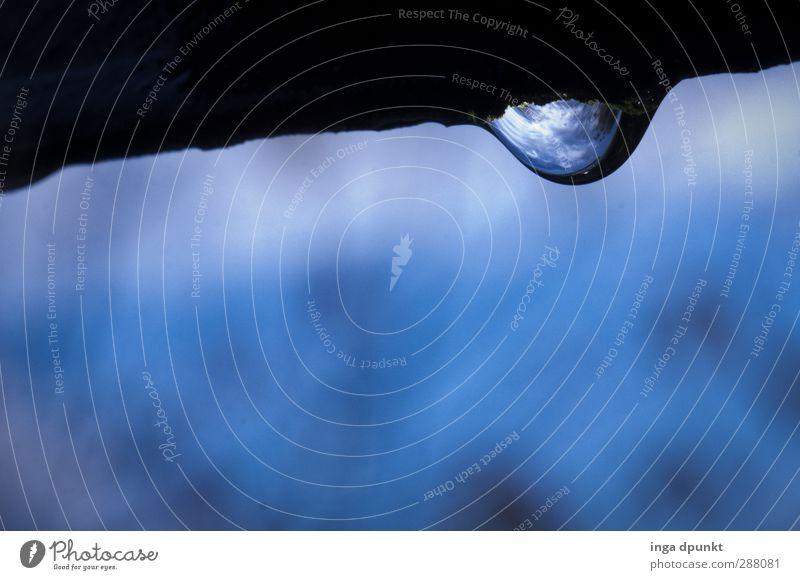 Steter Tropfen Natur blau Wasser Umwelt kalt Regen Klima authentisch nass Wassertropfen Urelemente fallen Umweltschutz schlechtes Wetter hängend tropfend