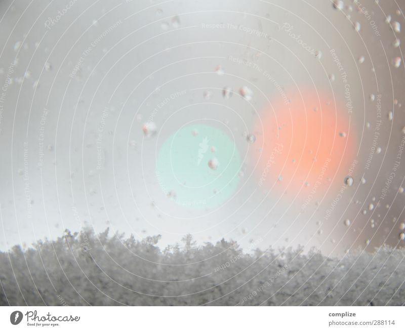 Winter zart* Natur weiß kalt Umwelt Autofenster Wohnung glänzend Energiewirtschaft Schneefall Häusliches Leben Wassertropfen Postkarte Fensterscheibe frieren