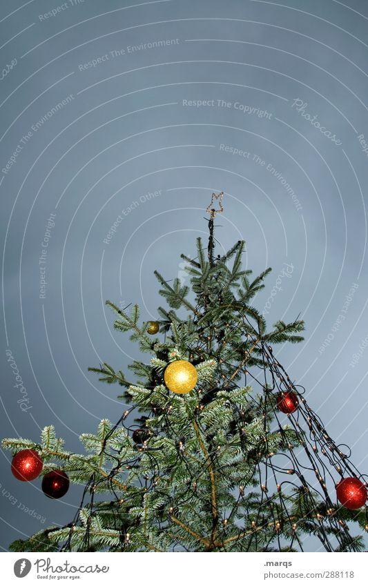 Apfelbaum Feste & Feiern Weihnachten & Advent Weihnachtsbaum Christbaumkugel Dekoration & Verzierung Himmel Gewitterwolken Winter Baum Zeichen leuchten dunkel